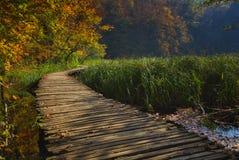 Favola di autunno nel parco nazionale immagine stock