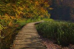 Favola di autunno nel parco nazionale immagine stock libera da diritti