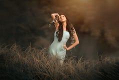 Favola di fantasia e bella donna - crisalide di legno fotografie stock