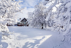 Favola di inverno, precipitazioni nevose pesanti Immagine Stock