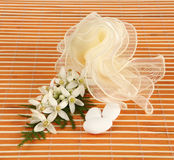 Favor with tulle and jasmine. Stock Images