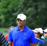 Favorable golfista Tiger Woods de PGA Fotos de archivo