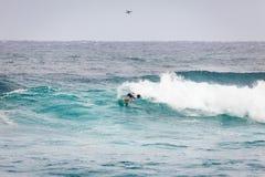 Favorable playa Hawaii de la puesta del sol de la persona que practica surf Imágenes de archivo libres de regalías