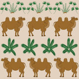 The favorite food of camel is the camel-thorn and other desert plants Stock Photography