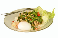 Favorite Thai fast food. Rice topped with stir-fried pork and basil Royalty Free Stock Image