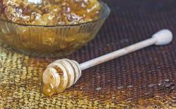 Favos de mel com mel e o dipper de madeira do mel Fotos de Stock Royalty Free