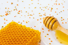 Favos de mel e dipper do mel Pólen em um fundo branco Imagem de Stock Royalty Free