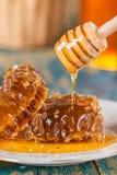 Favos de mel na placa no fundo de madeira Imagem de Stock Royalty Free