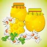 Favos de mel nas flores fotos de stock