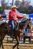 2018 FAWE-Rodeo Stock Foto