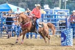 2018 FAWE-Rodeo Stock Afbeeldingen