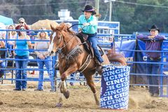 2018 FAWE Rodeo. Rodeo event at the 3rd Annual FAWE Expo in Hernando County, Florida showcased bull riders, ladies barrel racing and calf roping Royalty Free Stock Photo