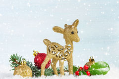 Fawn with fir branch and holly leaves in the snow. Stock Image