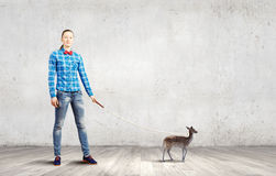 Fawn on lead. Young woman in casual holding fawn on lead Stock Photo