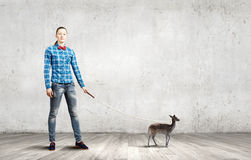 Fawn on lead. Young woman in casual holding fawn on lead Stock Image