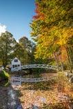 Faworyci fotografujący mosty wewnątrz w Acadia parku narodowym Obrazy Royalty Free