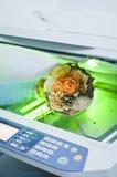 Fax printer Stock Photo