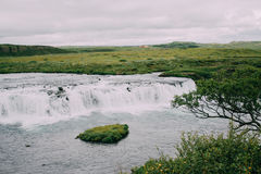 Faxi waterfall in Iceland Stock Images