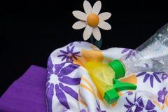 Faxina da primavera Fotografia de Stock