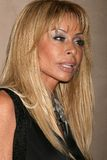 Faye Resnick. At Fendi Casa for 'Jet Black and Milk White,' an exhibition featuring the photography of Murray Garrett. Fendi Casa, West Hollywood, CA. 12-08-08 royalty free stock photography