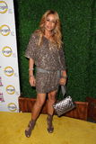 Faye Resnick. At 'The World According to Paris' Premiere Party, Roosevelt Hotel, Hollywood, CA 05-17-11 stock images