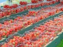 Fayre de fraise Image stock