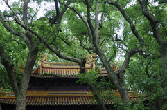 Free Fayu Temple Putuoshan China Royalty Free Stock Images - 57162549