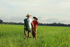Fazendeiro asiático Imagem de Stock