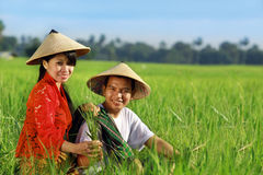 Fazendeiro asiático Imagens de Stock Royalty Free