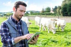 Fazendeiro atrativo novo que usa a tabuleta em um campo imagem de stock royalty free
