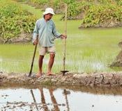 Fazendeiro cambojano Fotografia de Stock