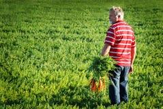 Fazendeiro com cenouras Fotos de Stock