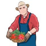 Fazendeiro com a cesta de legumes frescos, ilustração do vetor, desenho dos desenhos animados Os homens idosos do retrato colorid ilustração stock