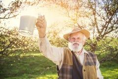 Fazendeiro com jarro de leite fotografia de stock royalty free