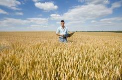 Fazendeiro com o portátil no campo de trigo imagens de stock
