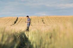 Fazendeiro com a tabuleta no campo no por do sol fotografia de stock royalty free