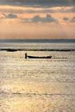 Fazendeiro da alga Imagens de Stock Royalty Free