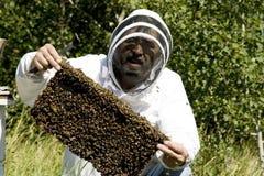 Fazendeiro do mel imagens de stock royalty free