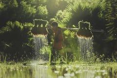 Fazendeiro do rapaz pequeno em campos verdes fotografia de stock royalty free