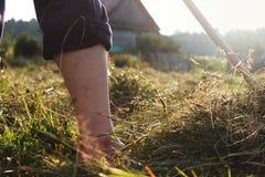 Fazendeiro e oblíquo no campo verde Fotos de Stock Royalty Free