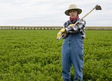 Fazendeiro em um campo do feno Foto de Stock Royalty Free