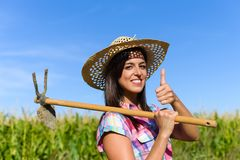 Fazendeiro fêmea bem sucedido com cavadura da enxada em um campo de milho fotos de stock royalty free
