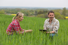 Fazendeiro fêmea que trabalha na exploração agrícola Foto de Stock