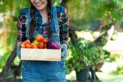 Fazendeiro feliz asi?tico das mulheres que mant?m uma cesta dos vegetais org?nica no campo do ar livre do vinhedo para a venda no fotografia de stock