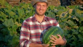 Fazendeiro feliz Keeps Ripe Watermelon na plantação no rancho vídeos de arquivo