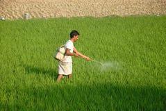 Fazendeiro indiano Foto de Stock