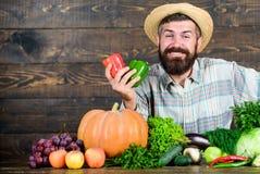 fazendeiro maduro farpado Festival da colheita alimento sazonal da vitamina Frutas e legumes ?teis Alimento org?nico e natural imagem de stock royalty free