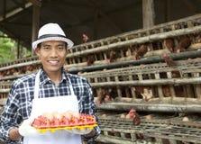 Fazendeiro na casa de galinha Imagem de Stock