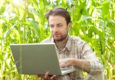Fazendeiro na frente do campo de milho que trabalha no laptop Fotografia de Stock Royalty Free