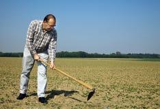 Fazendeiro no campo com plantas novas Foto de Stock